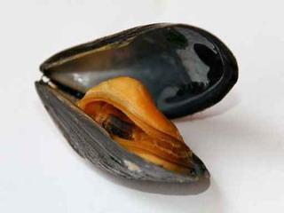 Ricetta Molluschi al varoma con il bimby