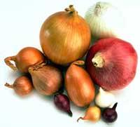 Ricetta Panzanella di cipolle e acciughe