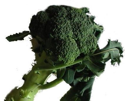 Ricetta Broccoletti all'acciuga