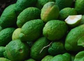 Ricetta Spremuta di cedro con la citronella
