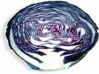 Ricetta Cavolo rosso farcito con pinoli e uvetta