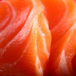 Ricetta Dadolata di salmone con pinoli e mandorle