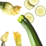 Ricetta Ditali con zucchine fritte