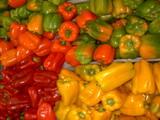 Ricetta Flan tricolore con salsa di peperoni