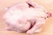 Ricetta Galantina di pollo